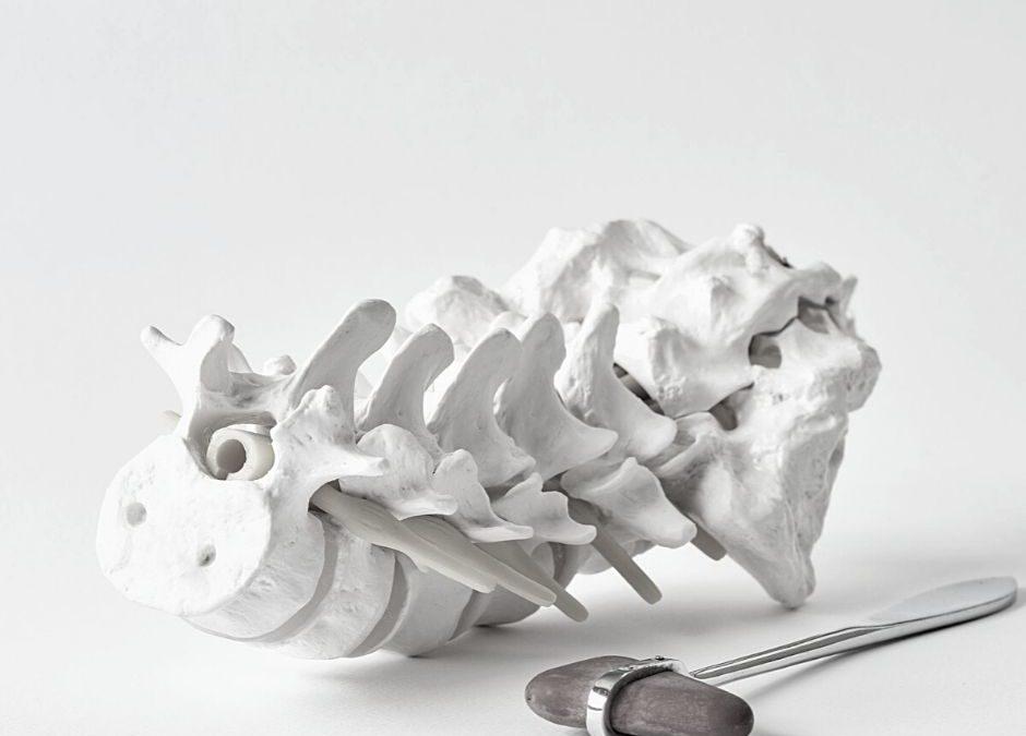 8 raons per cuidar la nostra columna vertebral